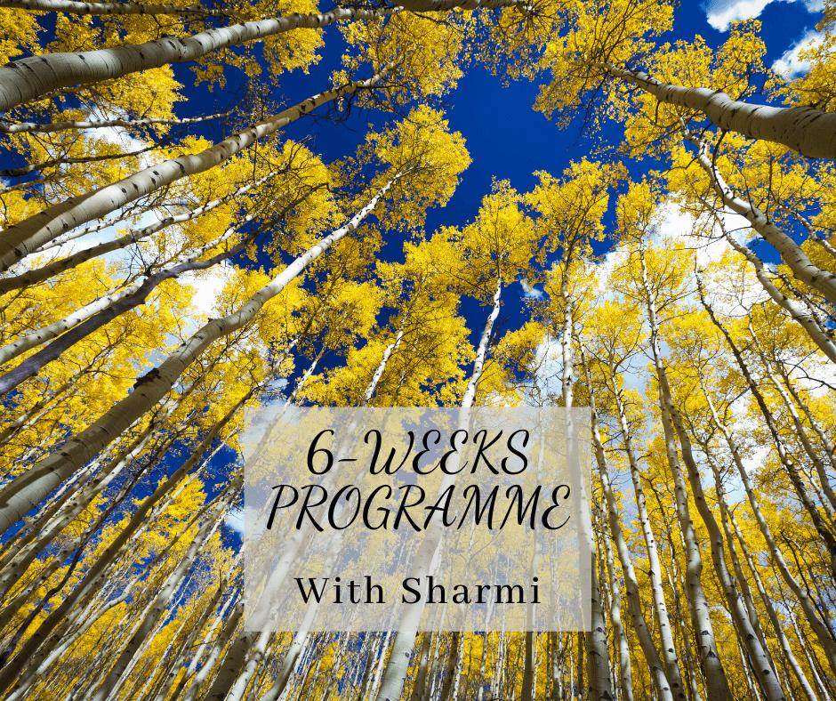 6-weeks programme
